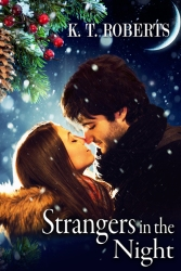 Strangers in the Night by K.T. Roberts book cover